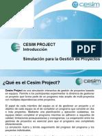 Cesim Project ESP DMG (2)