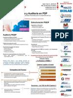 PIGDP RNBD y Auditoria 2.5.pdf