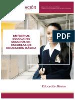 05. Entornos Escolares Seguros en Escuelas