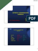 Distrofias y degeneraciones corneales.pdf