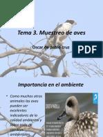 monitoreo de aves ecologia (1).pptx