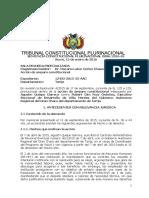 SENTENCIA CONSTITUCION INAMOVILIDAD DE PERSONAL EVENTUAL