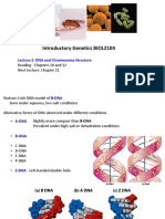 Genetics Lecture 2 - DNA and chromosome structure.pdf
