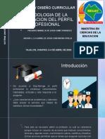 METODOLOGIA DE LA ELABORACION DEL PERFIL PROFESIONAL.pptx