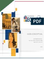 GUIA CONCEPTUAL.pdf