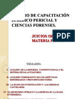 JUICIOS ORALES CCJPCF