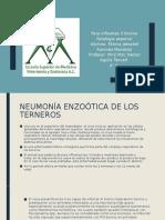 parainfluenza 3 bovino.pptx