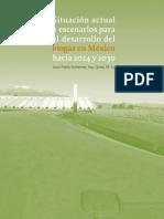 BIOGÁS HACIA 2024 Y 2030 EN MÉXICO_LIBRO.pdf