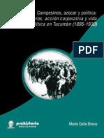 CAMPESINOS_AZUCAR_Y_POLITICA.pdf