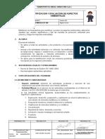 TA-RAU-MAN-IAA-EST-008 Identificación y EvaluaciónAspectosAmbientales