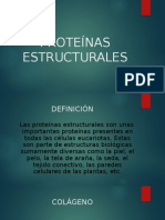 PROTEINAS ESTRUCTURALES1