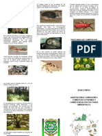 FOLLETO BIOLOGIA