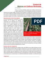 84. Control de Malezas en Cultivos Horticolas.pdf