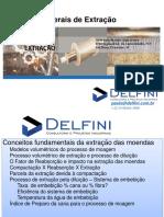 paulo_delfini.pdf