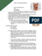 11.fisiopatologia de la ictericia y de la insuficiencia hepatica.docx