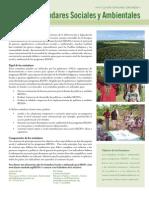 REDD+SES Factsheet 06-16-10 Spanish