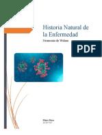 Historia natural de la enfermedad coronavirus