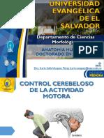 Cuarto Examen Corto Teorico - Neuro.pdf