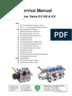 EV 100 Service Manual.pdf