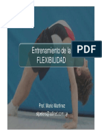 Flexibilidad (resumen).pdf