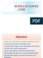 BLOOD SUPPLY OF LOWER LIMB reviews