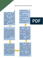 planificacion de la presentacion del p0lan de accion a la organizacion diagnosticada.