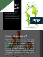 INDICADOR CALIDAD DEL AIRE.pdf