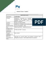 Modelo do relatório