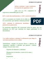 AA.NN._2-2019.ppt