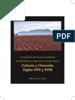 Composicion_de_tierras_y_tendencias_de_p.pdf