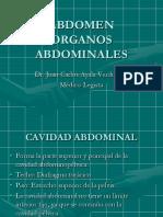 CAVIDAD ABDOMINAL ESTOMAGO, HIGADO, PANCREAS, BAZO