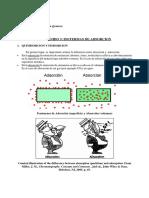Apunte_3_isotermas_de_adsorcion