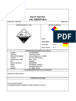 CAL HIDRATADO.pdf
