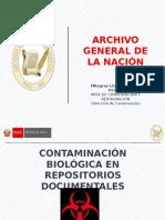 Contaminación Biológica en Archivos (Antes del coronavirus)