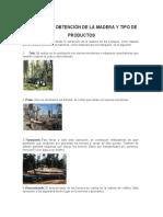 PROCESO DE OBTENCIÓN DE LA MADERA Y TIPO DE PRODUCTOS