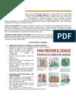 28 Prevencion del Dengue.docx
