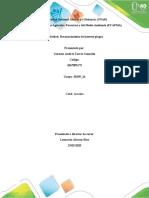 Reconocimiento de insectos plaga Thrips palmi German Torres  (6)