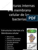 CLASE 7-Estructuras internas a la membrana