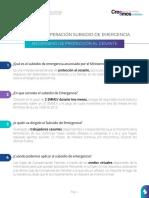 Preguntas-Subsidio-de-Emergencia.pdf