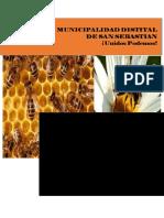 367126896-Plan-de-Negocio-de-Produccion-Apicola.docx