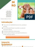 PNEUMONIA VERMINOTICA - Trabalho.pptx