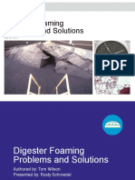 Digester Foaming Solutions