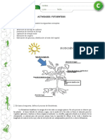 fotosíntesis 1
