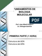 2.0 La molecula de ADN