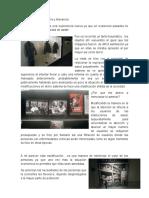 Reporte museo memoria y tolerancia