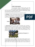 Conteúdo cultural- festas do brasil