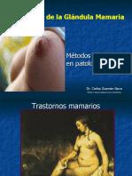 10b.- Exploracion mamaria (2)