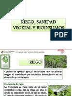RIEGO, SANIDAD VEGETAL Y BIOINSUMOS.pdf