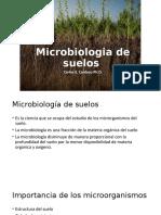 microbiologia de suelos