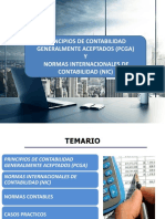 PRINCIPIOS Y NORMAS DE CONTABILIDAD.pdf